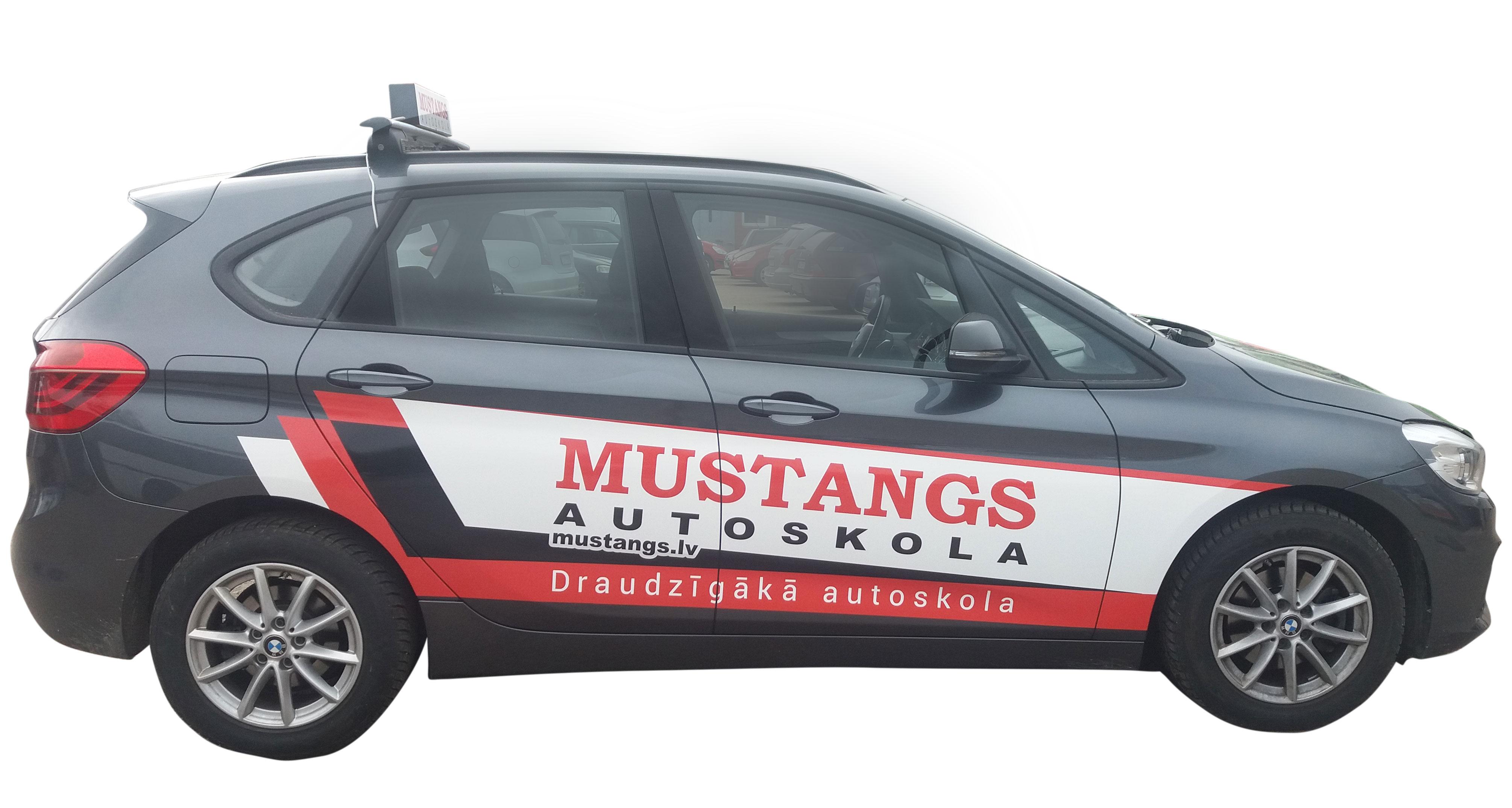 Mustangs1_web